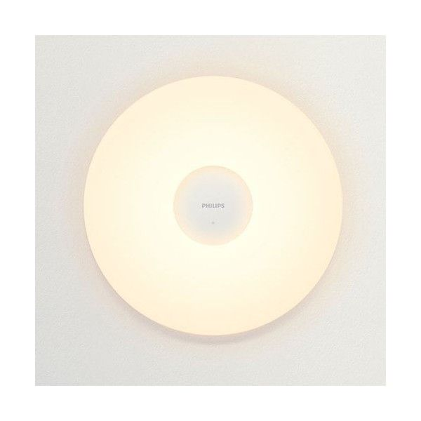 Xiaomi MiJia Philips Smart celing light - Xiaomi - TradingShenzhen.com